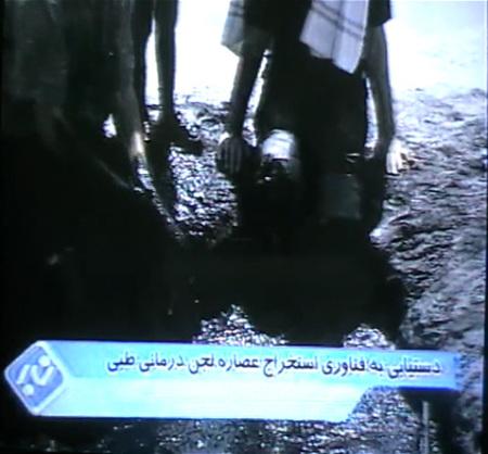 استخراج عصاره لجن دریاچه ارومیه